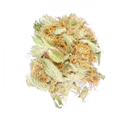 Buy blueberry Tangie